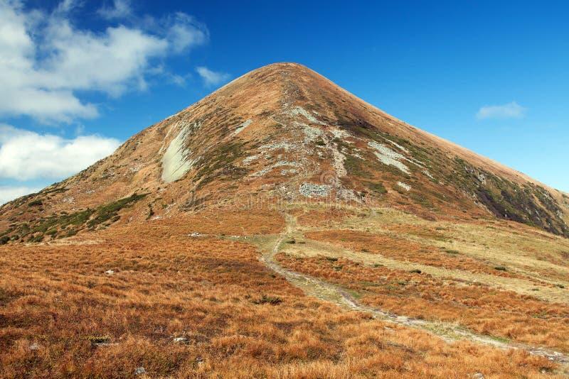 Supporto Hoverla o Goverla, montagne carpatiche dell'Ucraina fotografia stock libera da diritti