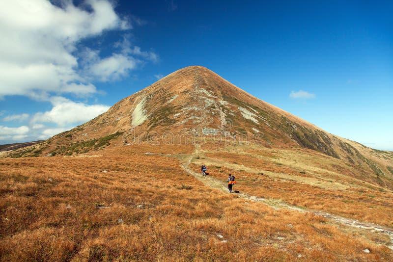 Supporto Hoverla o Goverla, montagne carpatiche dell'Ucraina fotografia stock