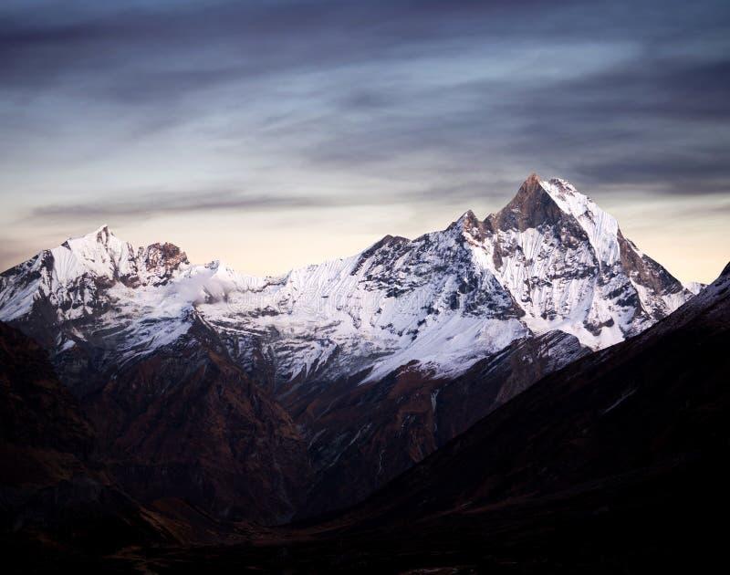 Supporto Machapuchare & x28; Fishtail& x29; , il Nepal Himalaya immagini stock