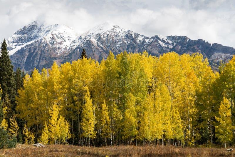 Supporto Owen 13.058 piedi e Ruby Peak 12.644 piedi con una tempesta in anticipo della neve di Colorado di caduta immagine stock libera da diritti