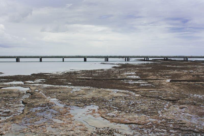 Sur Corredor стоковое фото