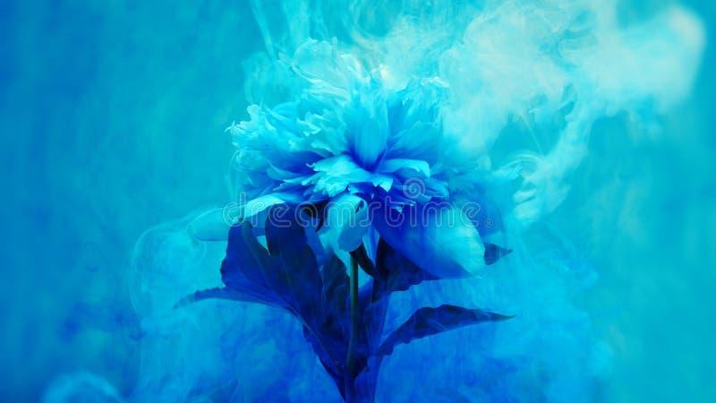 Sur de belles fleurs versant la peinture Plan rapproché illustration stock
