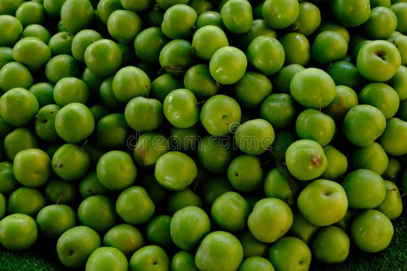 Sur grön plommon, det mest underbar och mun som bevattnar sura plommoner, sura plommoner för det gravid royaltyfri fotografi