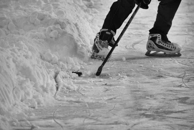 Sur l'étang congelé photographie stock libre de droits