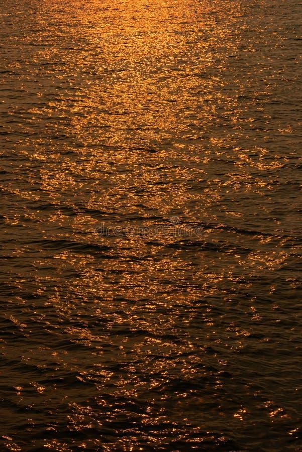 Sur l'étang doré image stock