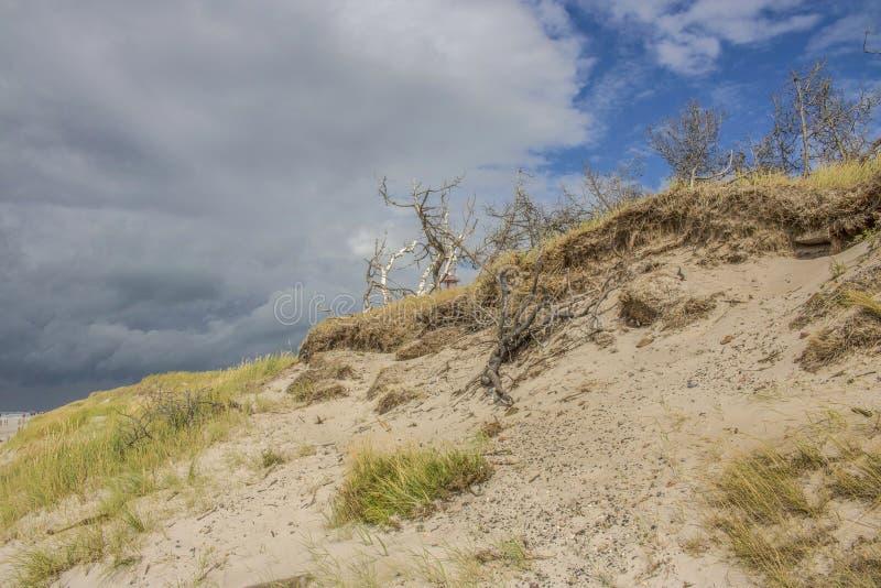 Sur la plage photos libres de droits