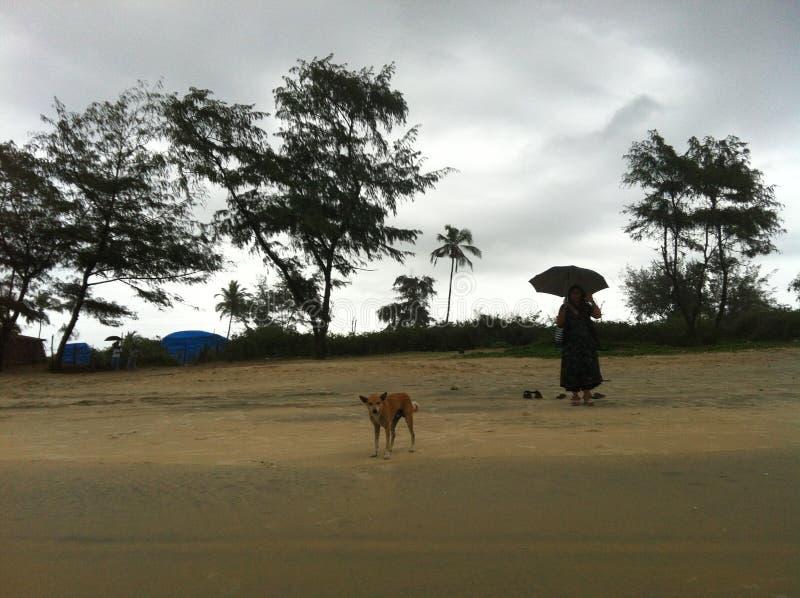 Sur la plage de Cavelossim, Goa image libre de droits
