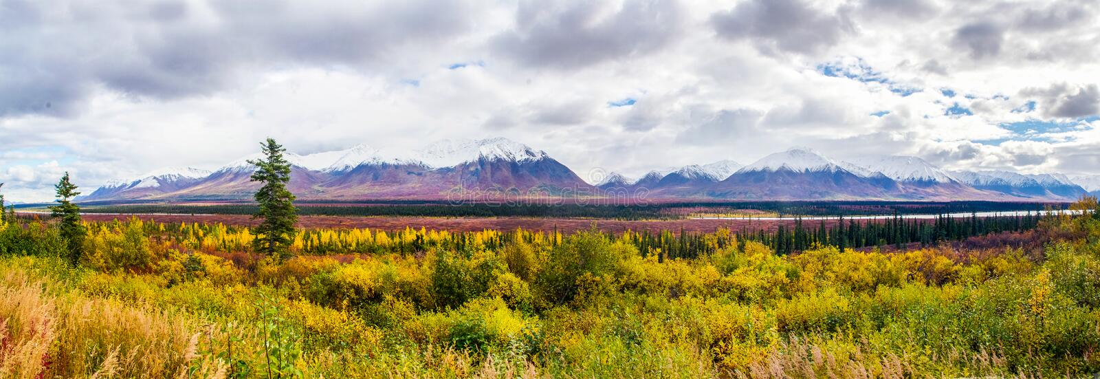Sur la route au parc national de Denali photo stock