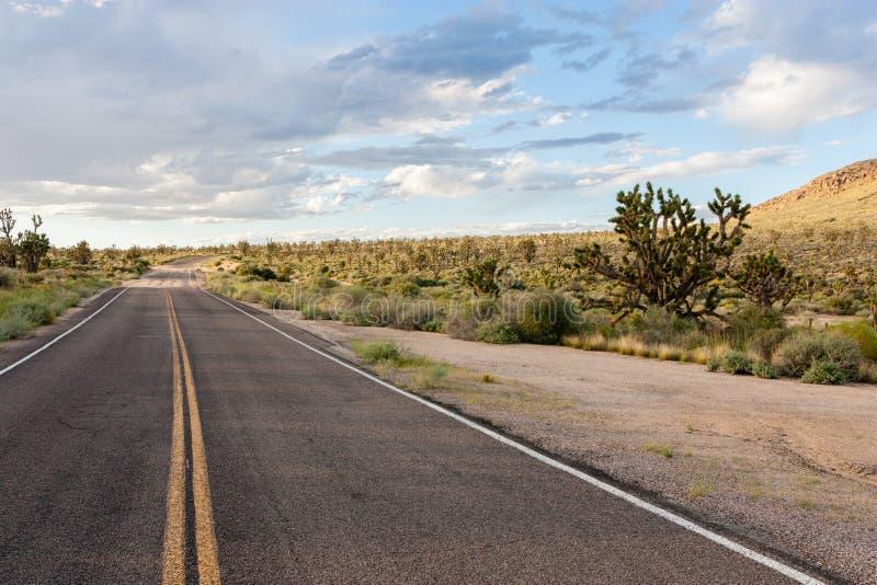 Sur la route dans la conserve nationale de Mojave images stock