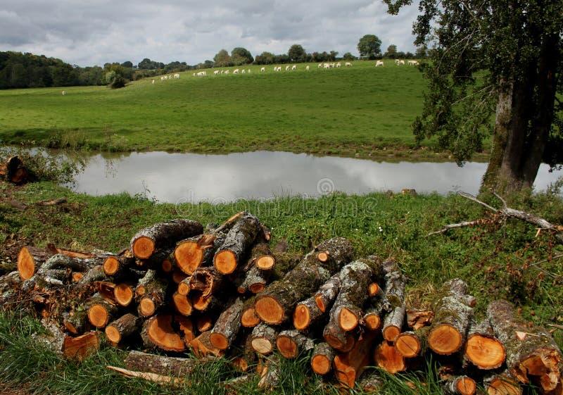 Sur le canal du Nivernais, velo, en Bazois de Chatillon photographie stock libre de droits