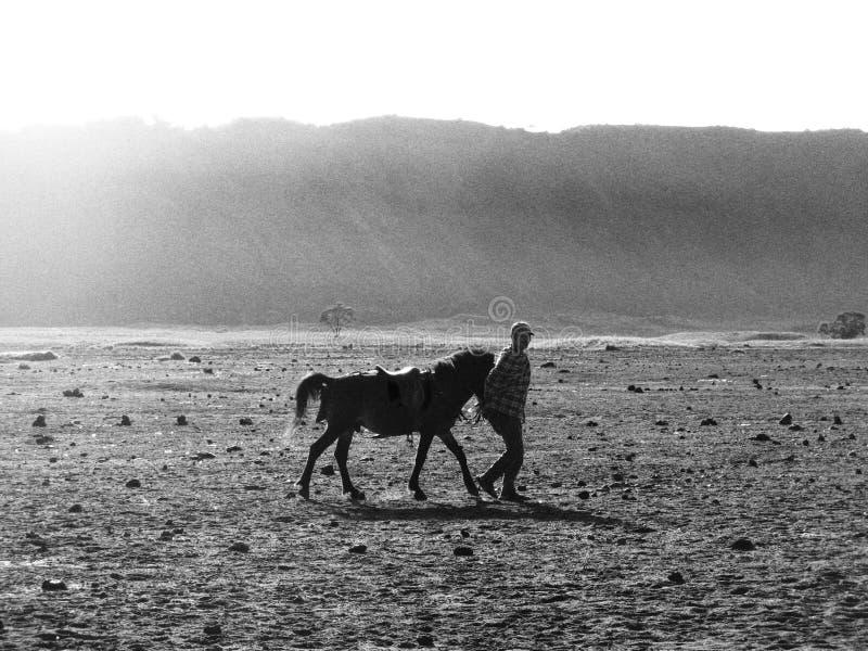 Sur le chemin de monter Bromo photographie stock libre de droits