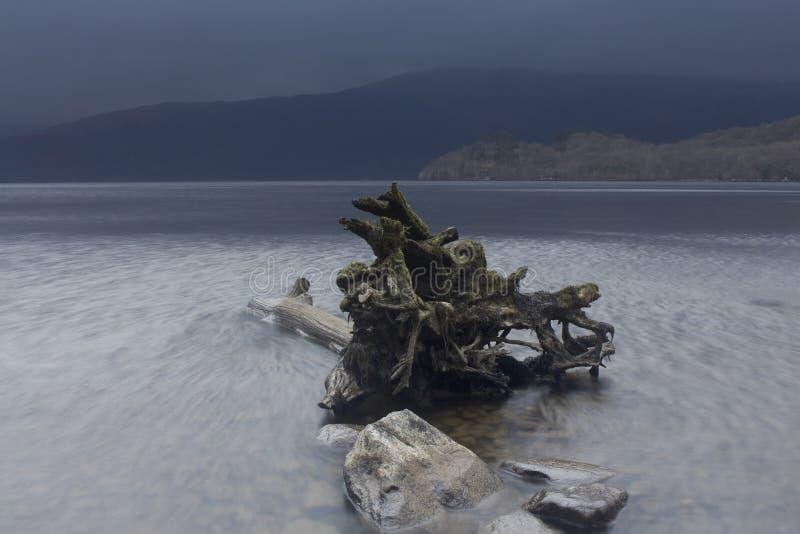 Sur les banques de Loch Lomond photo libre de droits