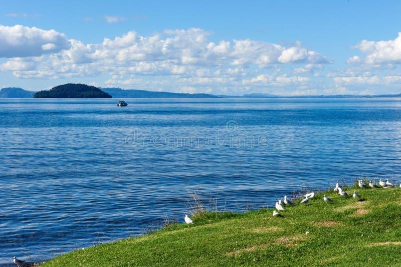 Sur les rivages du lac Taupo au Nouvelle-Zélande photographie stock libre de droits