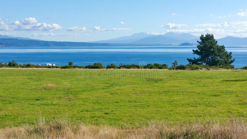 Sur les rivages du lac Taupo au Nouvelle-Zélande photo libre de droits