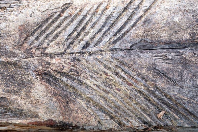 Sur les vieilles traces extérieures en bois de l'action mécanique sous forme de pluralité de triangles photo libre de droits