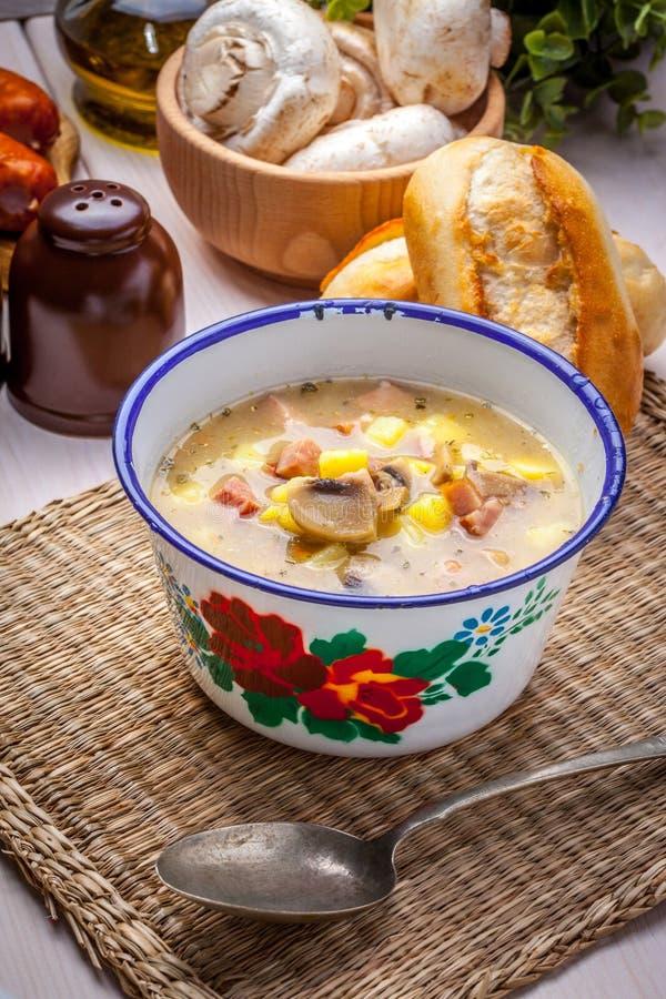 Sur soppa med bröd arkivbild