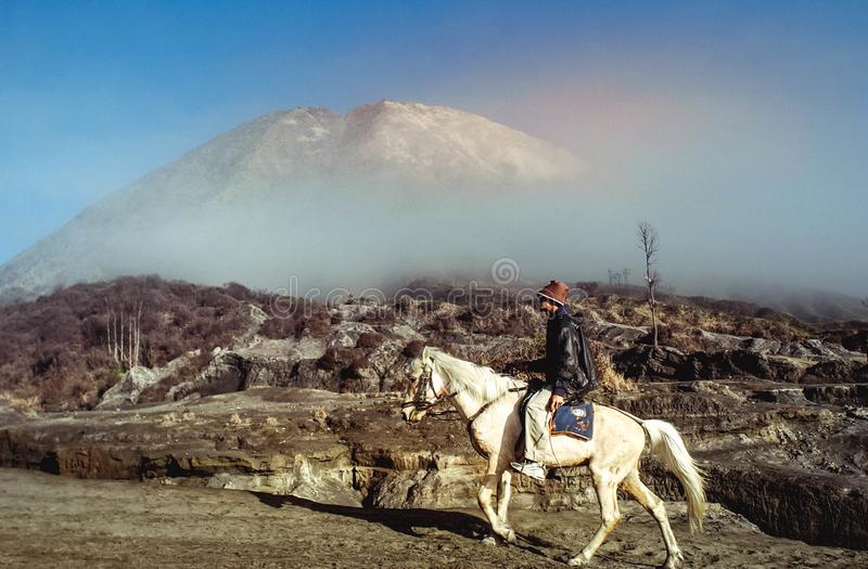 Horse is the main transportation for tourists visiting at mount Bromo. Surabaya, Indonesia - July 13, 2004: Horse is the main transportation for tourists stock images