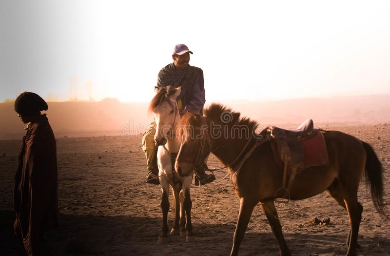 Horse is the main transportation for tourists visiting at mount Bromo. Surabaya, Indonesia - July 13, 2004: Horse is the main transportation for tourists royalty free stock images