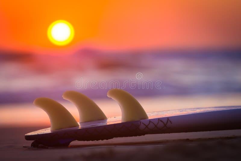 Surboard στην παραλία στο ηλιοβασίλεμα ή την ανατολή στοκ εικόνα με δικαίωμα ελεύθερης χρήσης