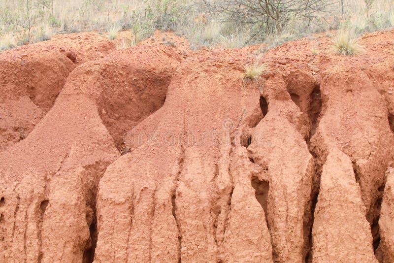 Surcos de tierra del agua profunda de la erosión en arena imagen de archivo
