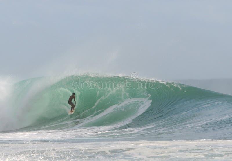 Surf. Ing stock photos