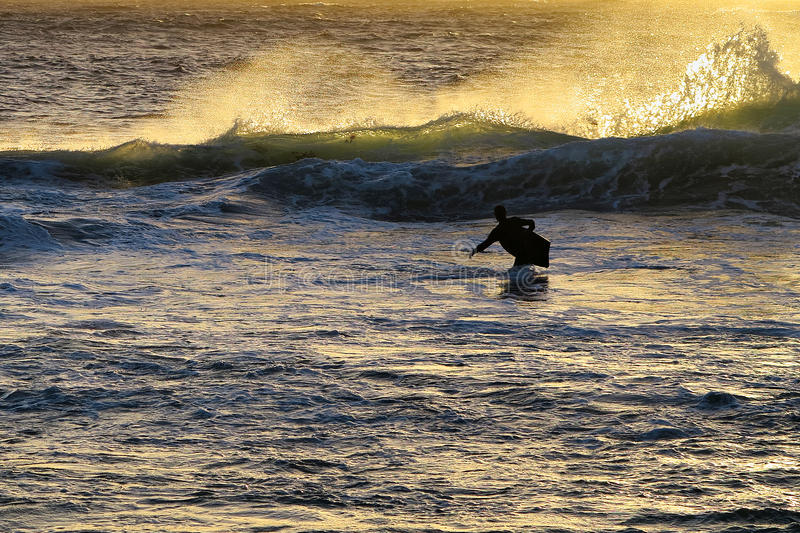 Download Surf Royalty Free Stock Photography - Image: 28489777