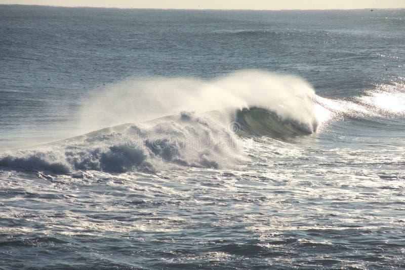 surf image libre de droits