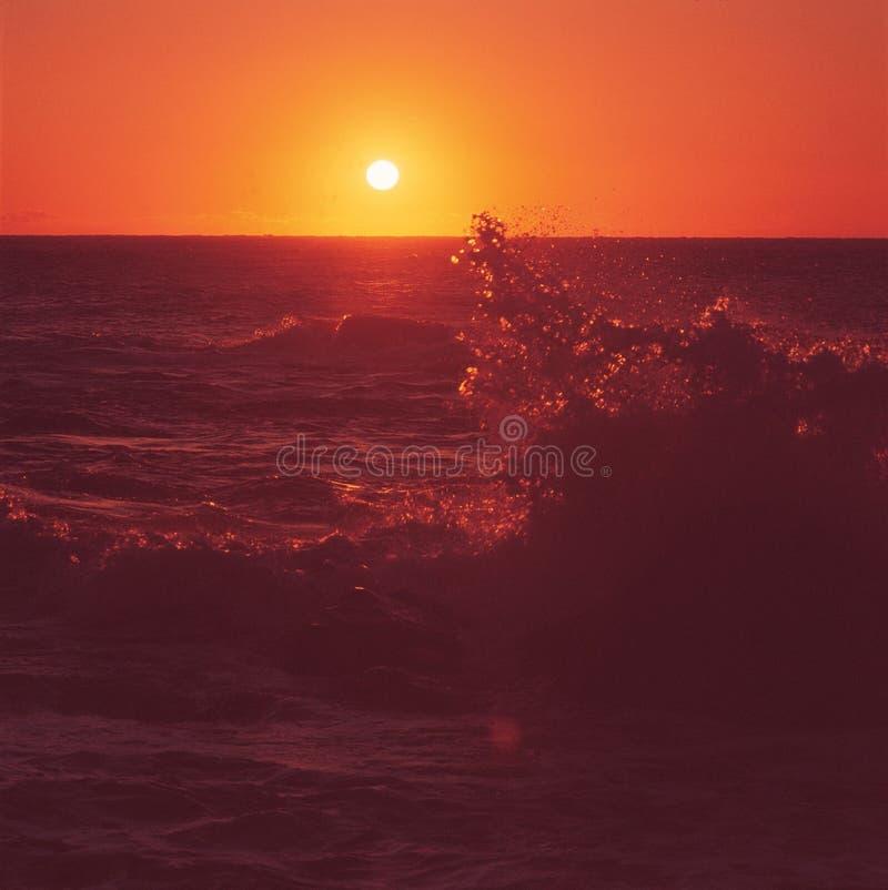 surf photographie stock