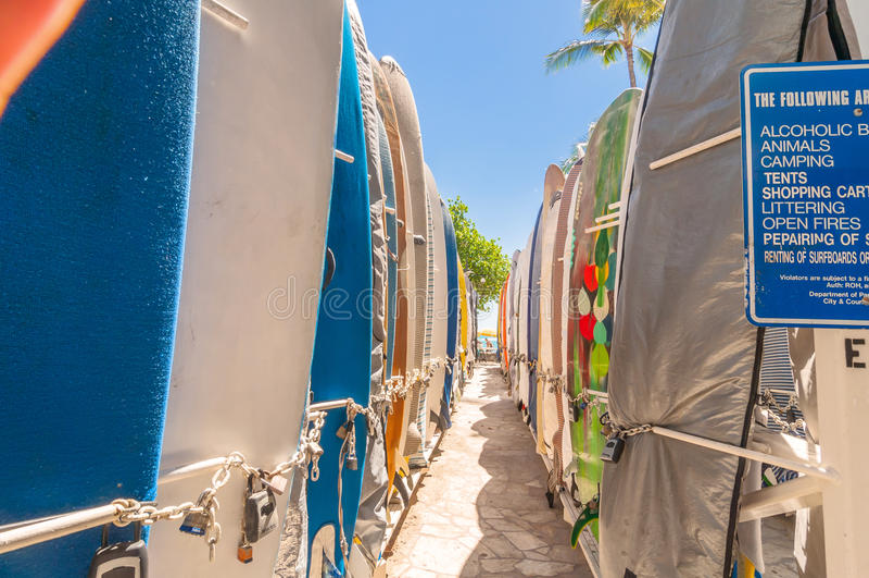 Surf alla spiaggia di Waikiki, Hawai immagine stock libera da diritti
