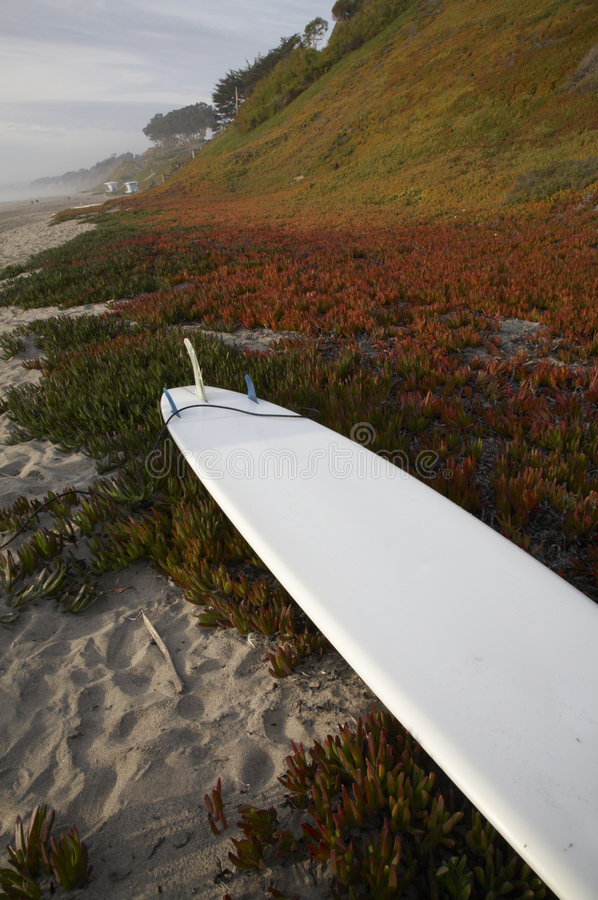 Download Surf Board Stock Photos - Image: 5228553