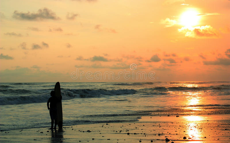 Download Surf boy stock photo. Image of paradise, boarding, holiday - 15478886