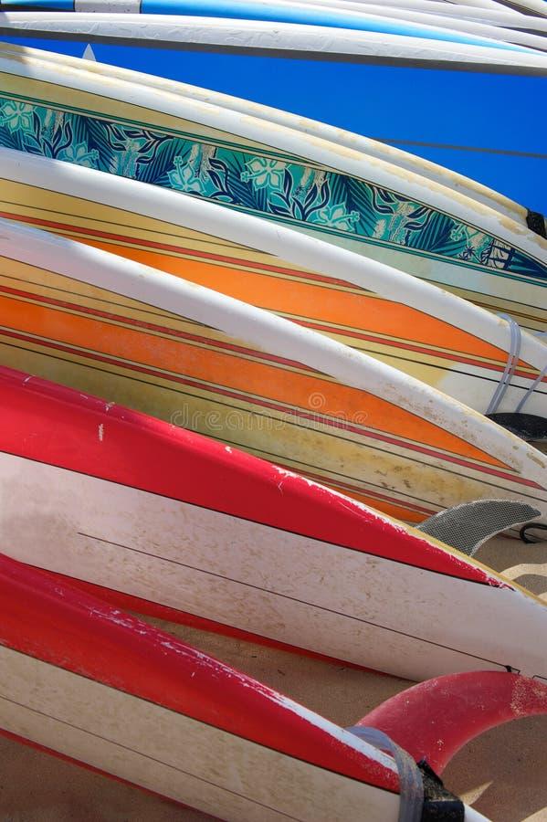 Surf brillantemente colorati che pongono sulla sabbia fotografie stock libere da diritti
