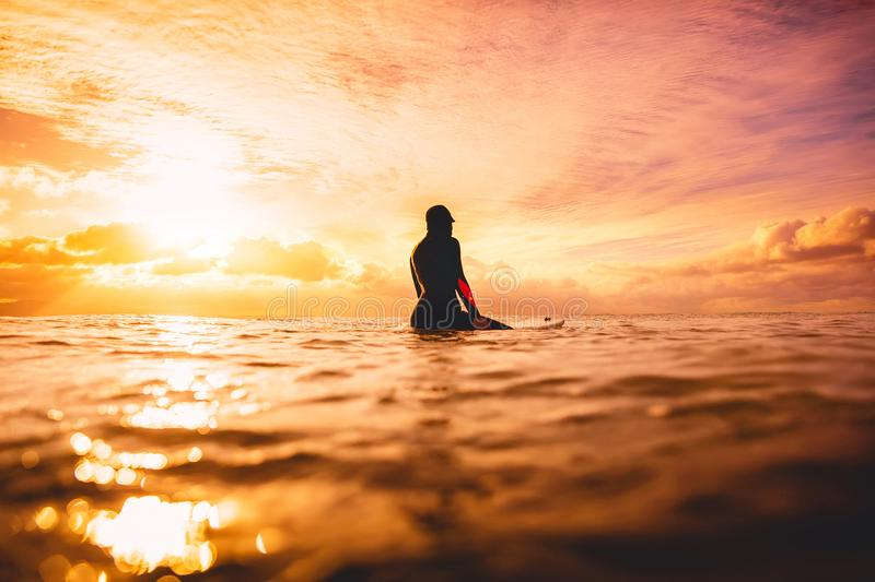 Surf girl in ocean at sunset or sunrise. Winter surfing in ocean royalty free stock photo