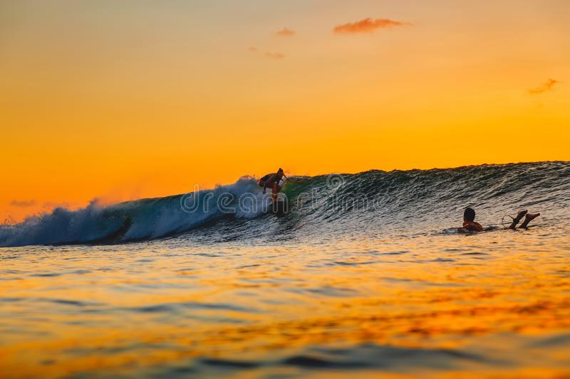 Surf girl on surfboard at sunset. Woman in ocean, sunset surfing. Surf girl on surfboard at sunset. Woman in ocean stock photography