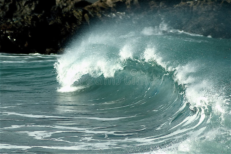 Surf's Up!. Breaking surf wave