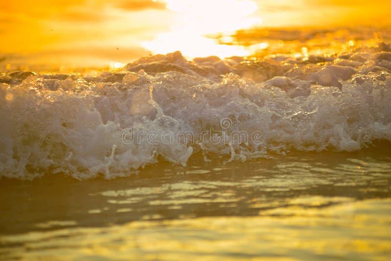 surf sea blured wave at golden light sunset beach background de stock image