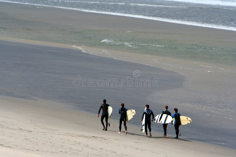 Surf team royalty free stock photography