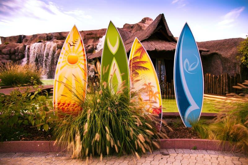 surf variopinti fotografia stock