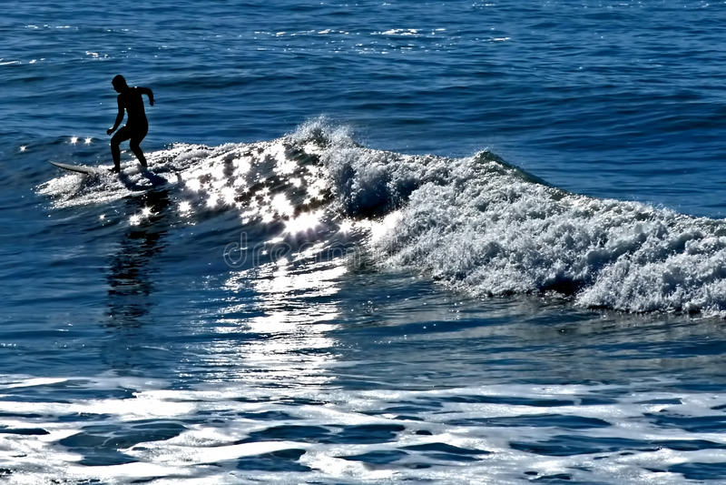 surfa royaltyfria foton