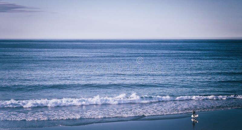 Surfa blåtten royaltyfria bilder