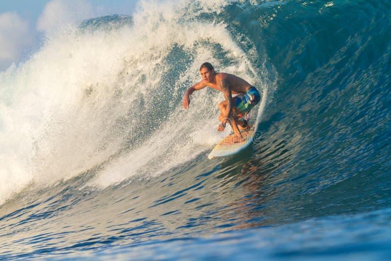 Surfa en våg. royaltyfria bilder