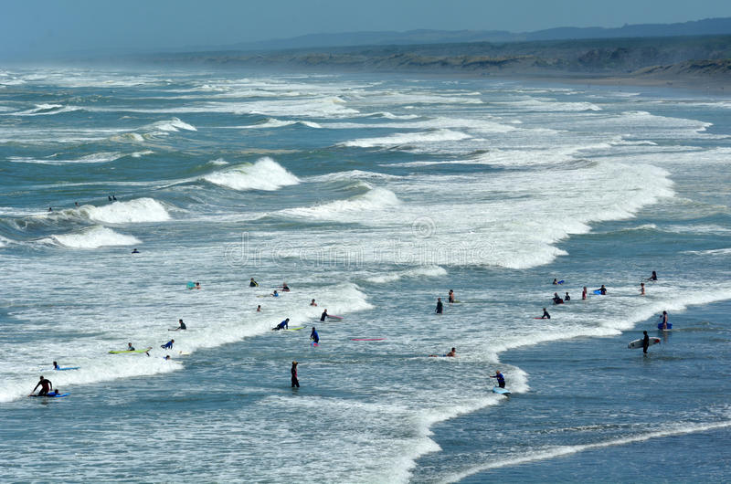 Surfa i den Muriwai stranden - Nya Zeeland royaltyfri bild