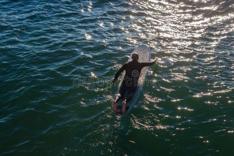 Surfa Longboard att paddla fotografering för bildbyråer