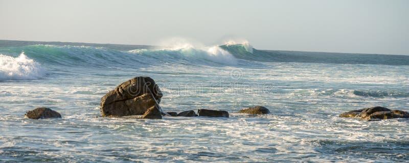 Surfa vaggar och vinkar royaltyfria foton