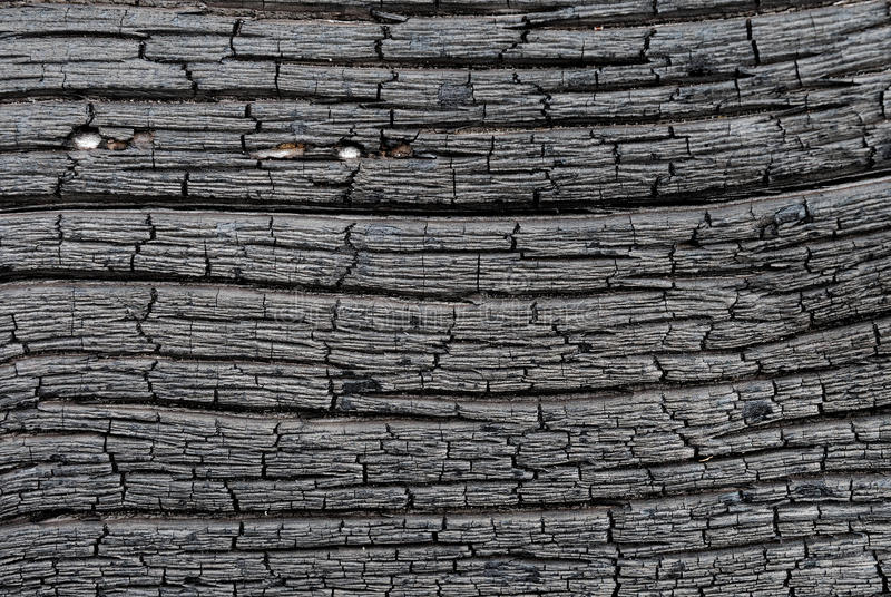Surface of charred wood stock image