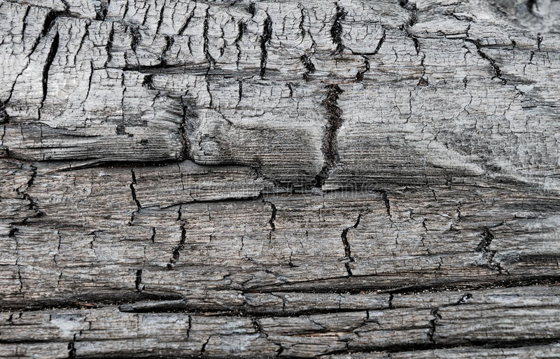 Surface of charred wood royalty free stock images