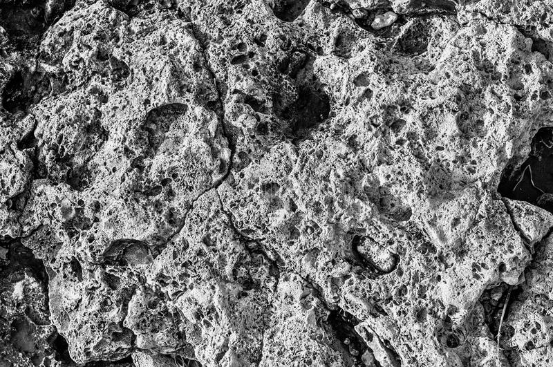 Surface of stone, structure. The surface of the coastal stone in a monochrome representation with a pronounced structure royalty free stock photo