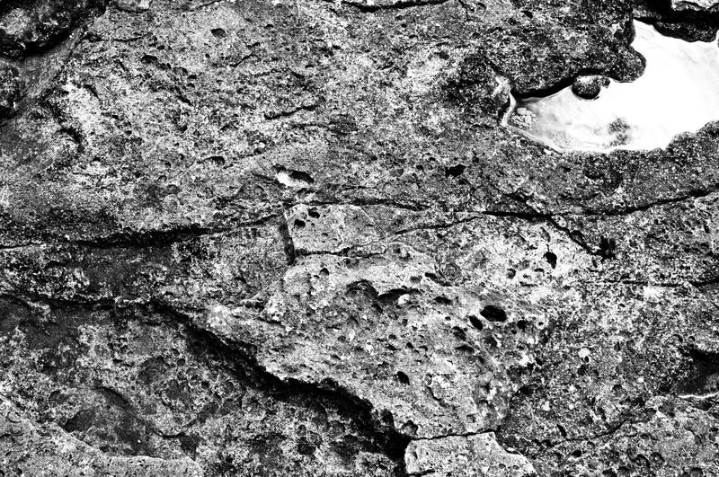 Surface of stone, structure. The surface of the coastal stone in a monochrome representation with a pronounced structure stock image