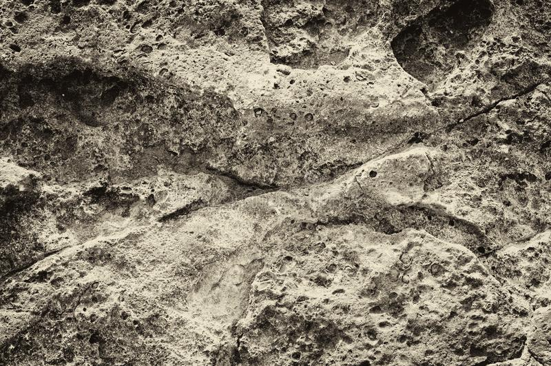 Surface of stone, structure. The surface of the coastal stone in the sepia representation with a pronounced structure stock photos