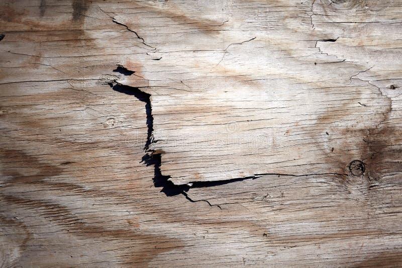 Surface criquée de écaillement de vieux bois superficiel par les agents photos libres de droits